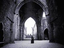 城堡爱尔兰 免版税库存图片