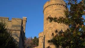 城堡的塔在树中的 升晚上太阳 影视素材
