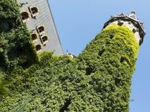 城堡的塔,包裹在蓝天backgr的绿色常春藤 库存照片