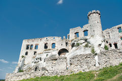 城堡的废墟。 库存照片