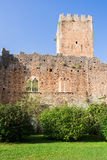 城堡的遗骸在Ninfa庭院里  库存照片