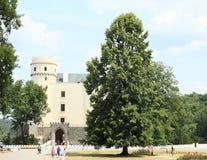 城堡的Orlik访客 图库摄影