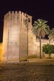城堡科多巴 库存照片
