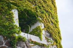 城堡窗口在意大利 免版税库存照片