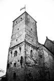 城堡纽伦堡 免版税库存照片