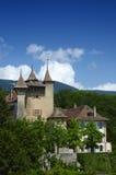 城堡结构树 库存照片