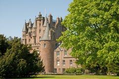 城堡结构树 库存图片