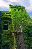 城堡绿色老塔 库存照片