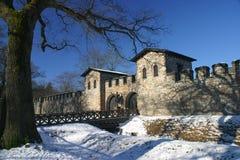 城堡罗马saalburg 免版税库存照片