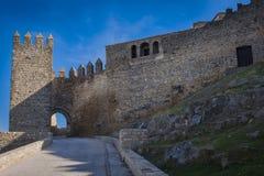 城堡萨维奥特door2 免版税库存照片