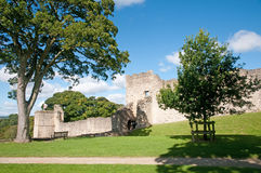 城堡通过树 免版税库存图片