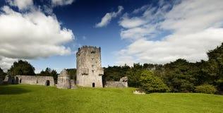 城堡都伯林草甸正方形 免版税库存照片
