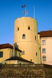 城堡里加 免版税库存照片