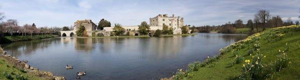 城堡黄水仙英国肯特利兹春天 库存照片