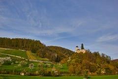 城堡Birseck在Arlesheim (瑞士) 免版税库存图片