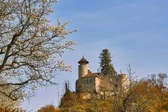 城堡Birseck在Arlesheim (瑞士) 库存图片