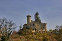 城堡Birseck在Arlesheim (瑞士) 库存照片