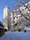 城堡Bitov,捷克共和国,欧洲 免版税库存照片