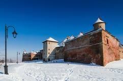 城堡Brasov,罗马尼亚回到视图  免版税库存照片
