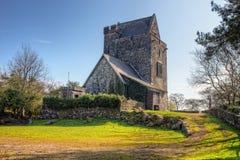 城堡clare co craggaunowen爱尔兰 免版税库存照片
