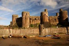 城堡conwy威尔士 库存图片