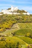 城堡falkenstein废墟 免版税库存图片