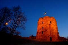 城堡gediminas维尔纽斯 库存照片