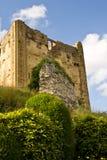 城堡guildford萨里 免版税库存图片