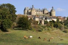 城堡hautefort 免版税图库摄影