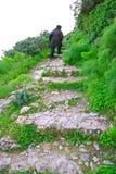 城堡kantara台阶 库存照片