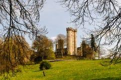 城堡Kasselburg在格罗尔斯泰因(德国)附近的佩尔姆 免版税图库摄影