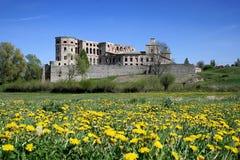 城堡krzyztopor 库存照片
