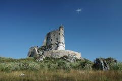城堡Mirów 库存图片