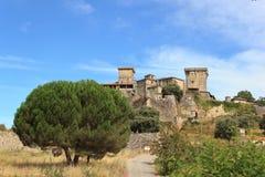 城堡monterrei 库存照片