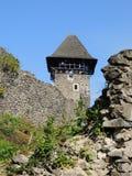城堡Nevitske的废墟 图库摄影