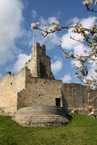城堡prudhoe 免版税库存图片
