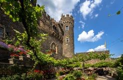 城堡Rheinstein 库存图片