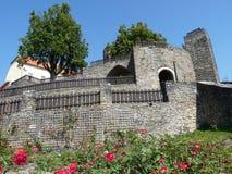 城堡Svojanov 库存图片
