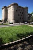 城堡tarascon 库存照片