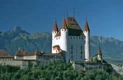 城堡thun 库存照片