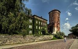 城堡wawel 免版税库存照片