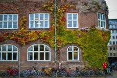 城市†‹â€ ‹自行车 免版税图库摄影