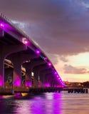 城市五颜六色的佛罗里达迈阿密晚上&# 库存图片