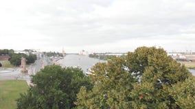 城市全景从后面树 4K 股票录像
