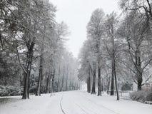 城市公园冬天视图  库存图片