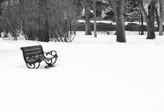 城市公园冬天 免版税库存图片