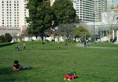 城市公园和绿色空间 图库摄影