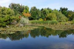 城市公园在博伊西,爱达荷 免版税库存图片