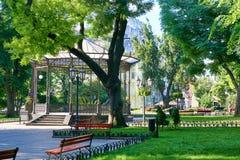 城市公园在夏天、明亮的被日光照射了,绿色树和阴影 库存图片