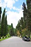 城市公园在新阿丰7月 库存照片